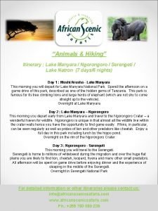 Animals Hiking Itinerary Lake Manyara Ngorongoro Serengeti Lake