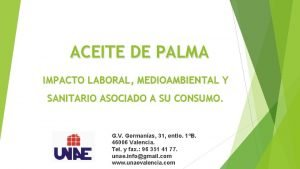 ACEITE DE PALMA IMPACTO LABORAL MEDIOAMBIENTAL Y SANITARIO