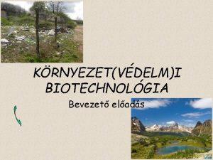 KRNYEZETVDELMI BIOTECHNOLGIA Bevezet elads biotechnolgia biolgiai anyagok folyamatok