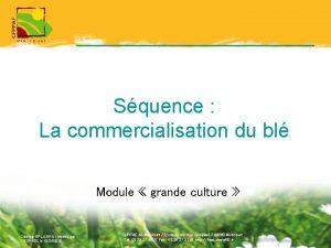 Squence La commercialisation du bl Module grande culture