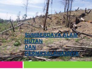SUMBERDAYA ALAM HUTAN DAN PERMASALAHANNYA Kajian mengenai hutan