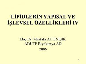 LPDLERN YAPISAL VE LEVSEL ZELLKLER IV Do Dr