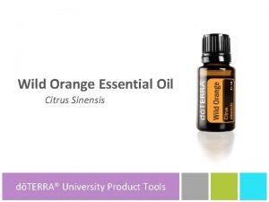 Wild Orange Essential Oil Citrus Sinensis dTERRA University