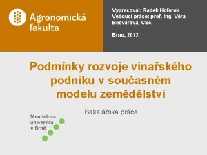 Vypracoval Radek Hoferek Vedouc prce prof Ing Vra
