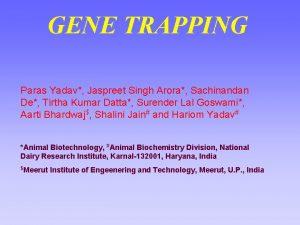 GENE TRAPPING Paras Yadav Jaspreet Singh Arora Sachinandan