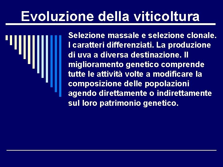 Evoluzione della viticoltura Selezione massale e selezione clonale