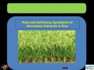 Role and Deficiency Symptoms of Secondary Nutrients in