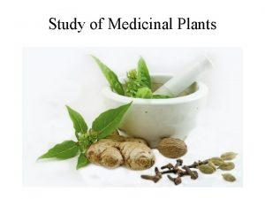Study of Medicinal Plants Urgent need to study