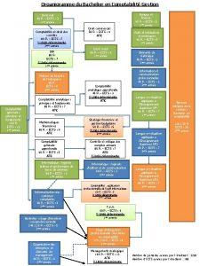 Organigramme du Bachelier en Comptabilit Gestion Droit civil