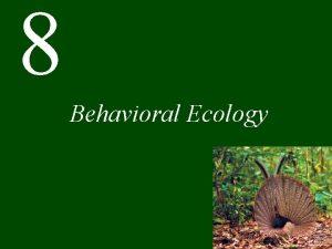 8 Behavioral Ecology Chapter 8 Behavioral Ecology CONCEPT