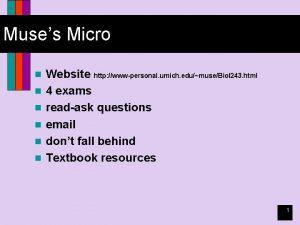 Muses Micro n n n Website http wwwpersonal