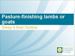 Pasturefinishing lambs or goats Sheep Goat Toolbox What