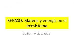 REPASO Materia y energa en el ecosistema Guillermo