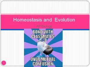 Homeostasis and Evolution AP Biology 1 Homeostasis Homeostasis