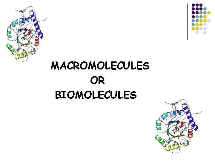 MACROMOLECULES OR BIOMOLECULES 4 Groups of Biomolecules Carbohydrates