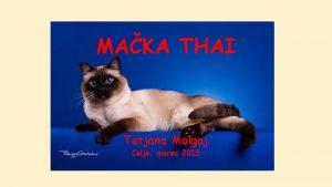 MAKA THAI Tatjana Malgaj Celje marec 2015 Thai