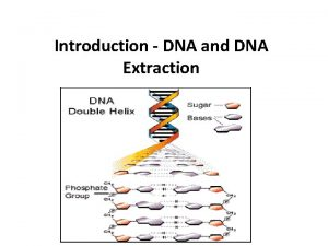 Introduction DNA and DNA Extraction Introduction DNA and