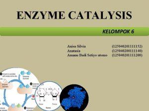 ENZYME CATALYSIS KELOMPOK 6 Anisa Silvia Anatasia Amanu