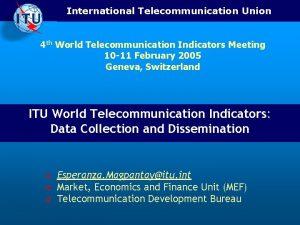 International Telecommunication Union 4 th World Telecommunication Indicators