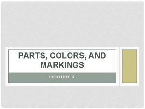 PARTS COLORS AND MARKINGS LECTURE 5 PARTS OF