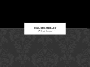 CELL ORGANELLES 8 th Grade Science ORGANELLES AND