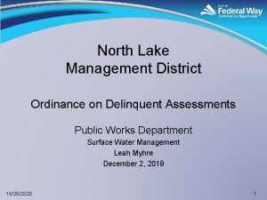 North Lake Management District Ordinance on Delinquent Assessments