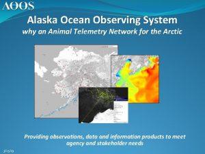 Alaska Ocean Observing System why an Animal Telemetry