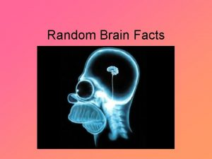 Random Brain Facts Random Brain Facts Weve learned