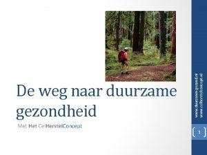 Met Het Cel Herstel Concept www duurzaamgezond nl