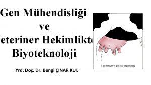 Gen Mhendislii ve Veteriner Hekimlikte Biyoteknoloji Yrd Do