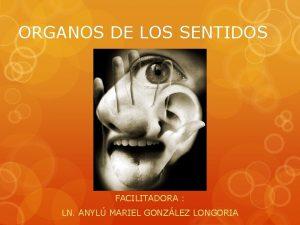 ORGANOS DE LOS SENTIDOS FACILITADORA LN ANYL MARIEL