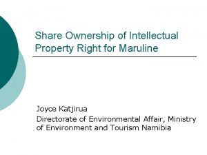 Share Ownership of Intellectual Property Right for Maruline