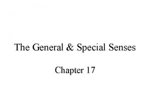 The General Special Senses Chapter 17 Introduction Senses