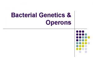 Bacterial Genetics Operons The Bacterial Genome l l