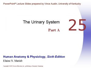 Power Point Lecture Slides prepared by Vince Austin