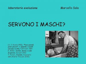 laboratorio evoluzione Marcello Sala SERVONO I MASCHI S