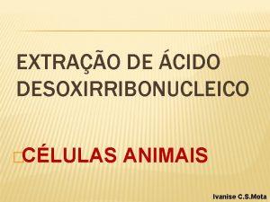 EXTRAO DE CIDO DESOXIRRIBONUCLEICO CLULAS ANIMAIS Ivanise C