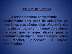 TECIDO NERVOSO O tecido nervoso compreende basicamente dois