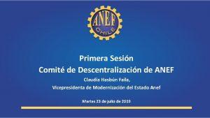 Primera Sesin Comit de Descentralizacin de ANEF Claudia