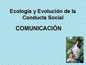 Ecologa y Evolucin de la Conducta Social COMUNICACIN