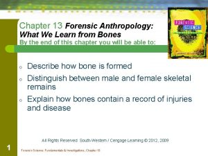 Chapter 13 Forensic Anthropology What We Learn from