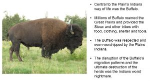 Central to the Plains Indians way of life