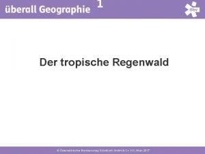 1 Der tropische Regenwald sterreichischer Bundesverlag Schulbuch Gmb