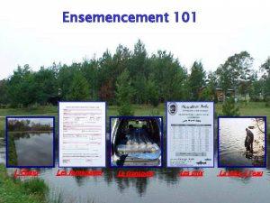 Ensemencement 101 Ltang Les formulaires Le transport Les