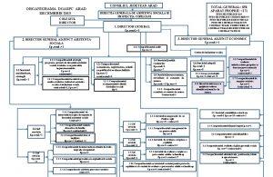 ORGANIGRAMA DGASPC ARAD DECEMBRIE 2013 COLEGIUL DIRECTOR CONSILIUL