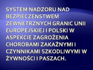 SYSTEM NADZORU NAD BEZPIECZENSTWEM ZEWNETRZNYCH GRANIC UNII EUROPEJSKIEJ