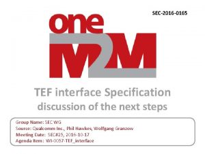 SEC2016 0165 TEF interface Specification discussion of the