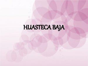 HUASTECA BAJA HUASTECA BAJA MUNICIPIOS Benito Jurez Cerro