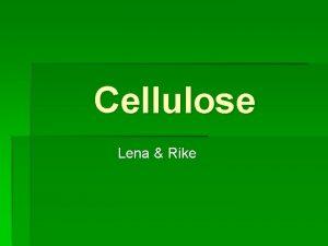 Cellulose Lena Rike bersicht 1 Was ist Cellulose
