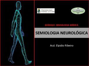 MDULO SEMIOLOGIA MDICA SEMIOLOGIA NEUROLGICA Acd Elpidio Ribeiro